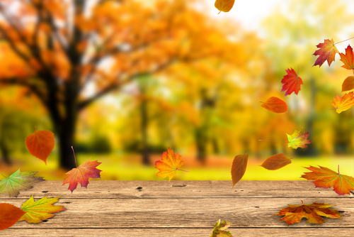 【10月の休業日について】